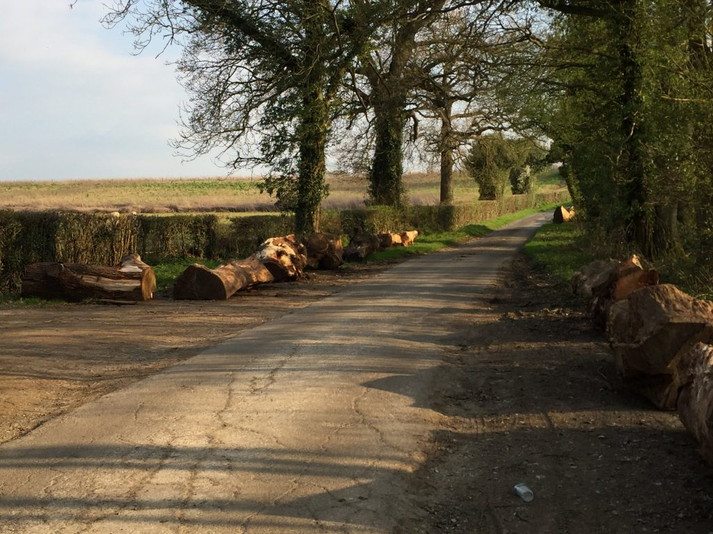 Lane to Dunsfold